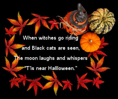 Witch and Black Cat Quote