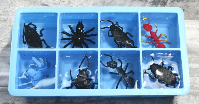 Diy Spider Ice Cubes Spooky Halloween Drink Idea With Bugs