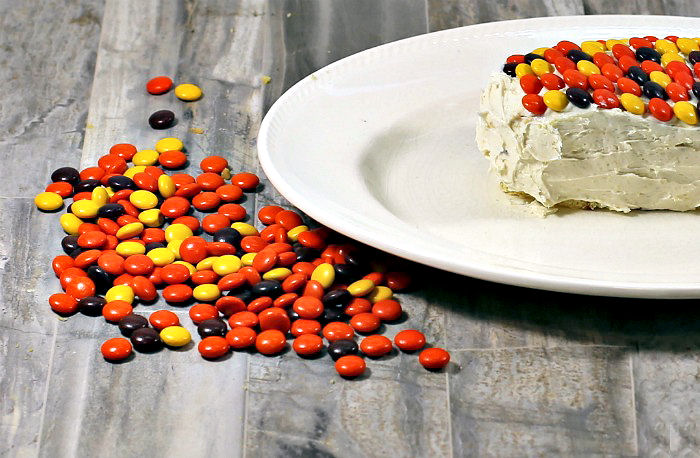 Reese's pieces with a cake on a white plate.