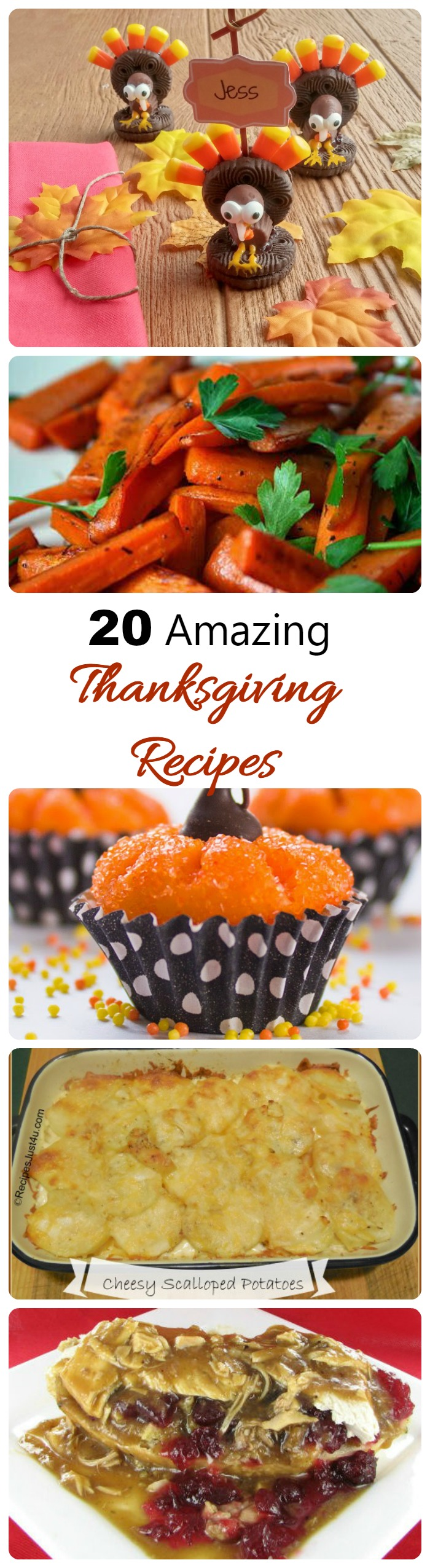 These 20 Amazing Thanksgiving Recipe ideas will make sure that your holiday celebration is a huge success.