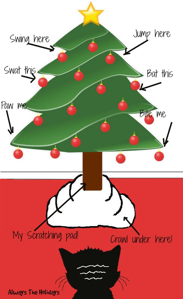 What your cat thinks about your Christmas tree!