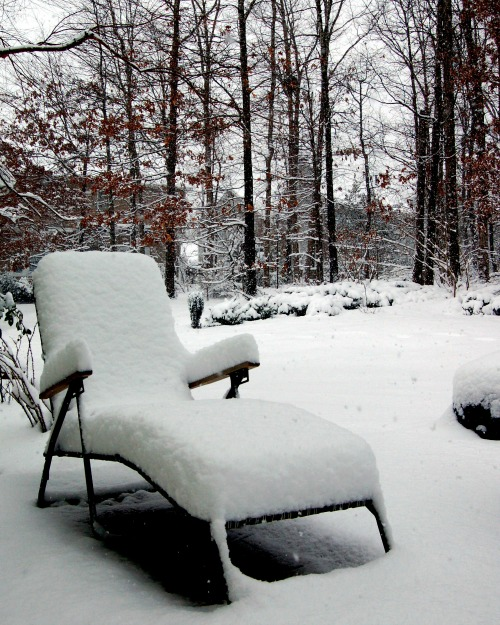 Chaise lounge covered in snow outside in a backyard.