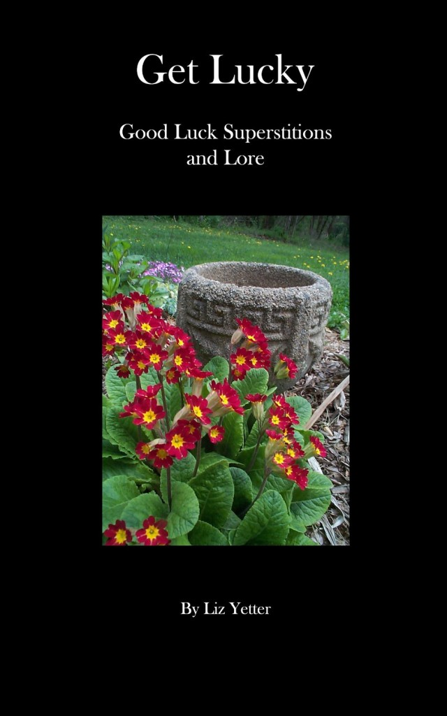Get Lucky by Liz Yetter