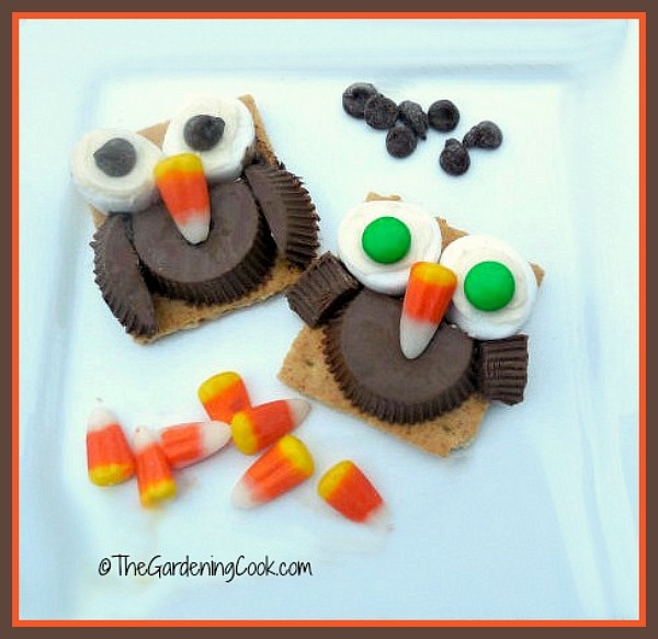 Adorable owl cookies are perfect for both Halloween and Thanksgiving