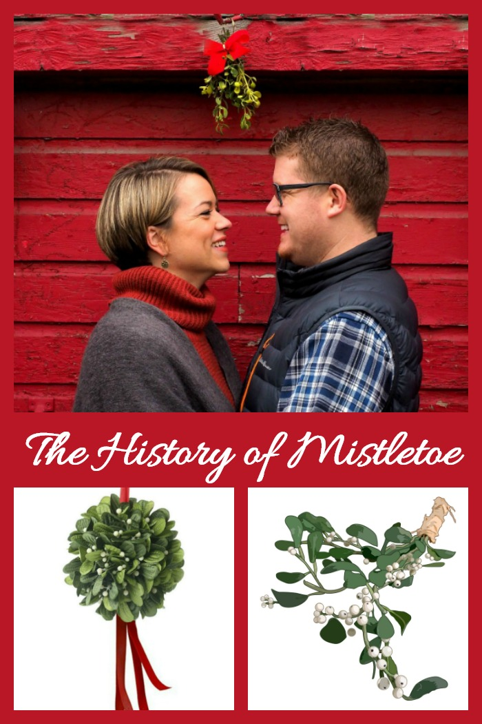 The history of mistletoe dates back to the ancient druids. Find out how this parasitic plant came to be known as the kissing plant
