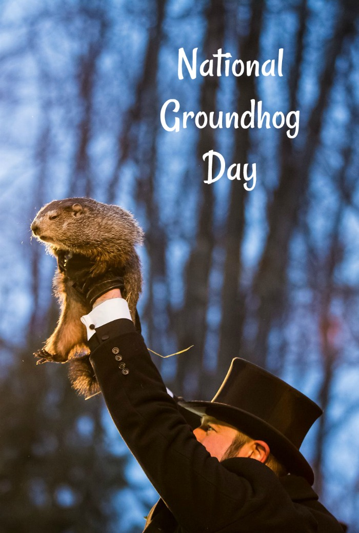 Punxsutawney Phil predicting the weather for National Groundhog day