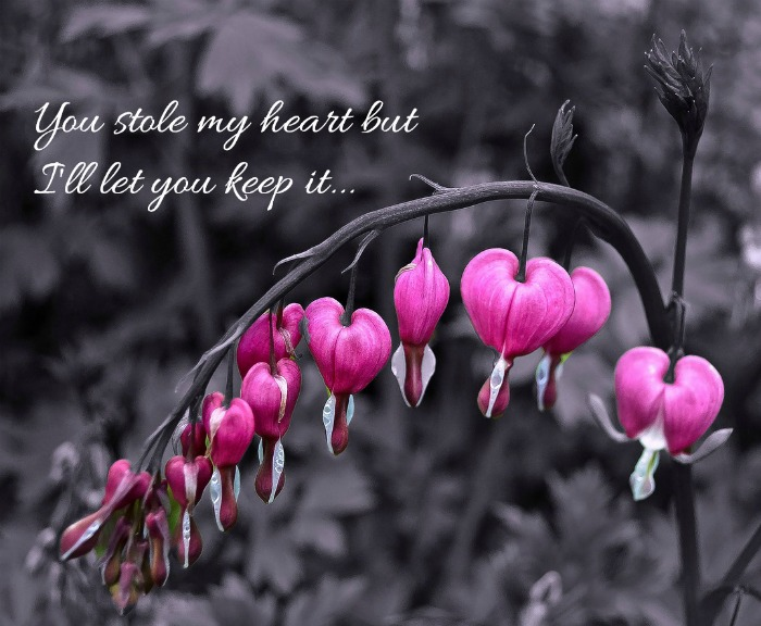 Inspirational love quote - You stole my heart, but I'll let you keep it.