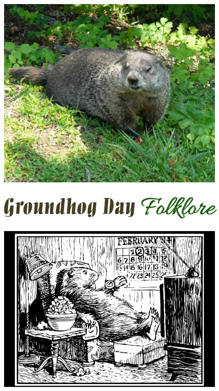 Folklore has it that the groundhog is a good predictor of the weather. But how often has he really been right?