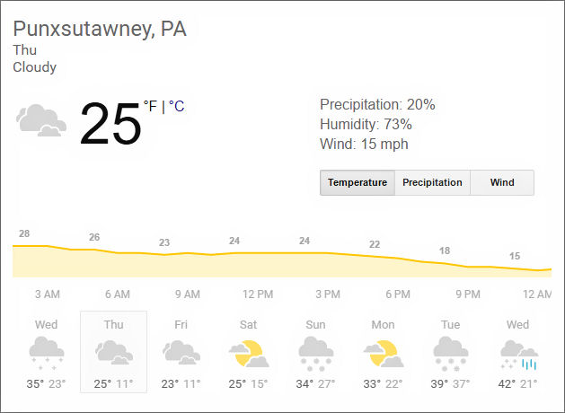 Groundhog day weather prediction
