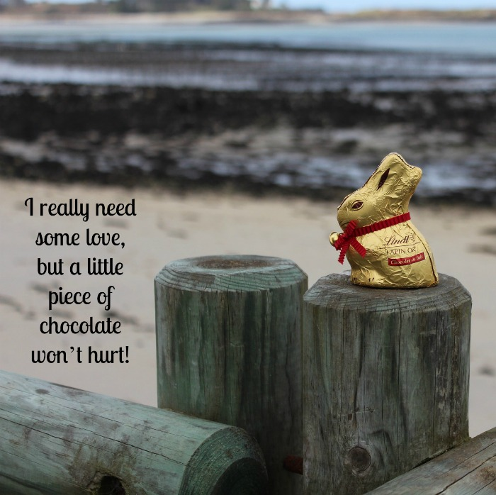 Easter chocolate quote over a photo of a Lindt chocolate bunny sitting on a rustic wooden fence at a rocky beach.