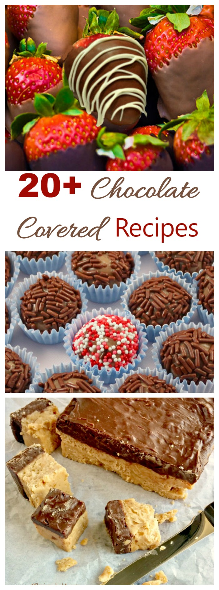 These 20+ Chocolate Covered Recipes are sure to tempt your sweet tooth. There are bars, cake, truffles, and candy recipes galore.