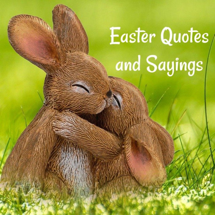 A baby bunny hugging a mommy bunny in a field with a text overlay that says Easter quotes and sayings.