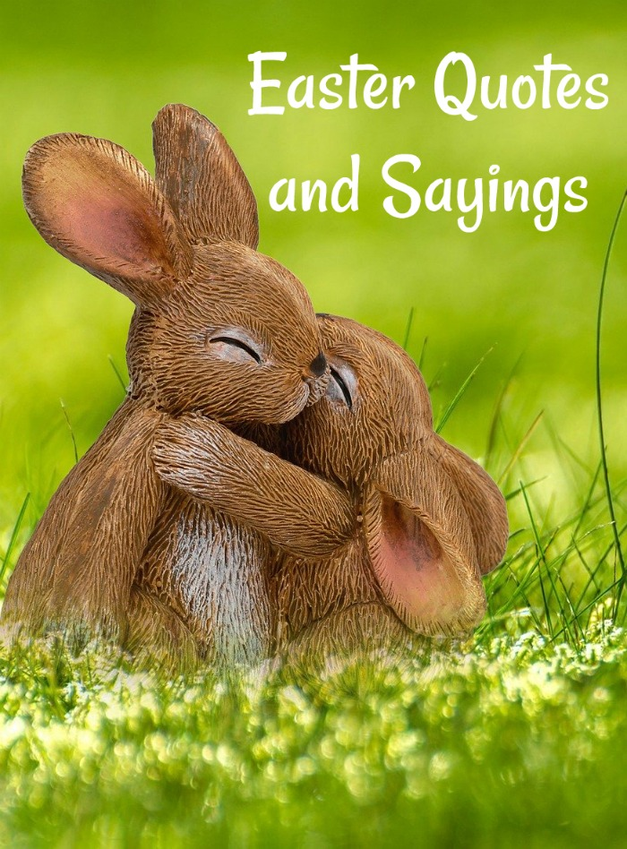 Easter quotes and sayings text overlay on top of a photo of a baby bunny hugging a mommy bunny in a field.