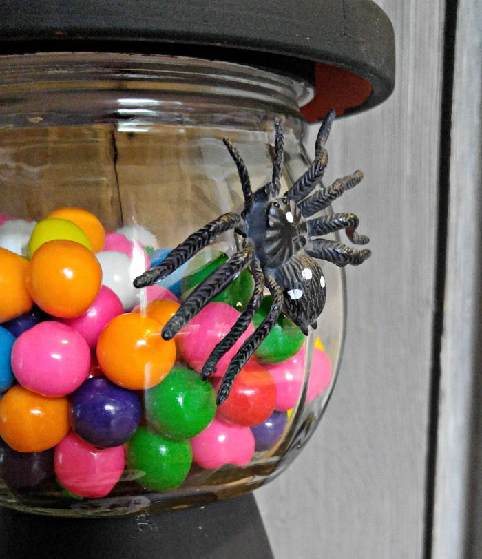 Adding a spider to the jar