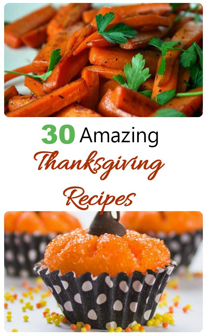 Need some ideas for Thanksgiving recipes? Try one of these great suggestions.