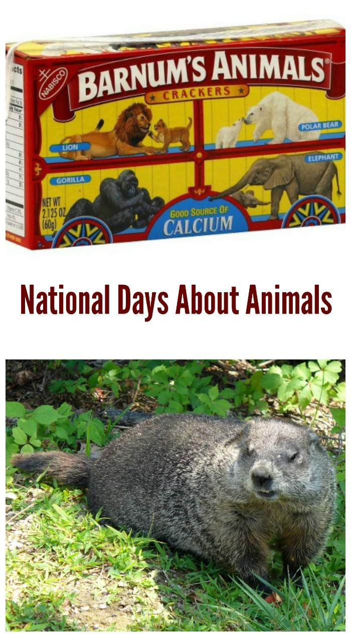 National Days about Animals
