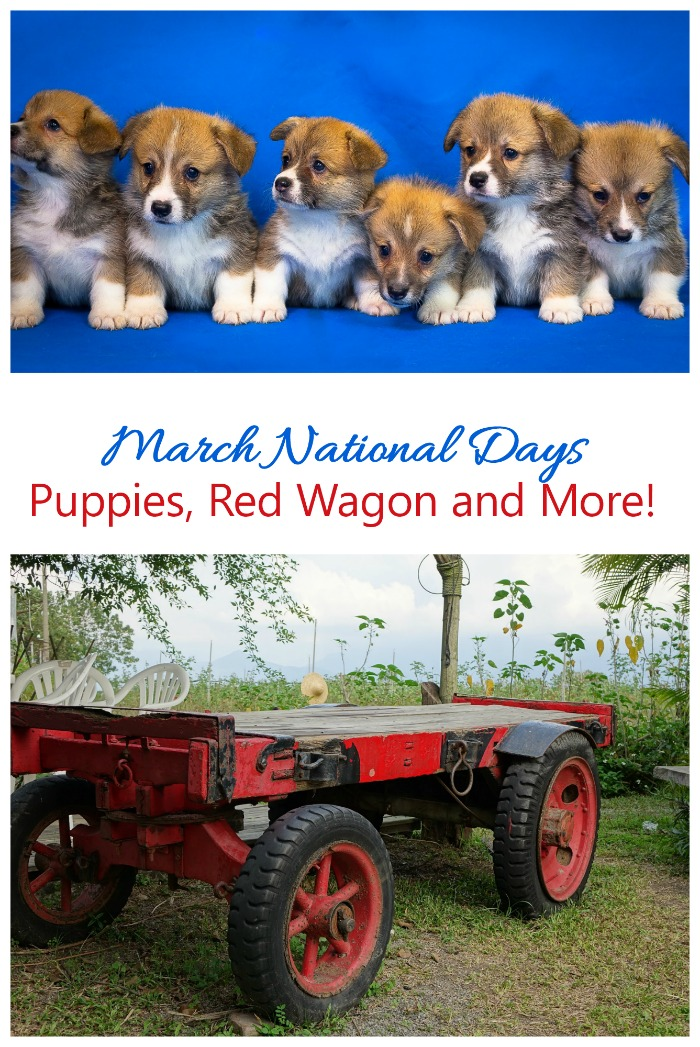 March National Days include National Puppy Day, National Red Wagon Day and so many more.