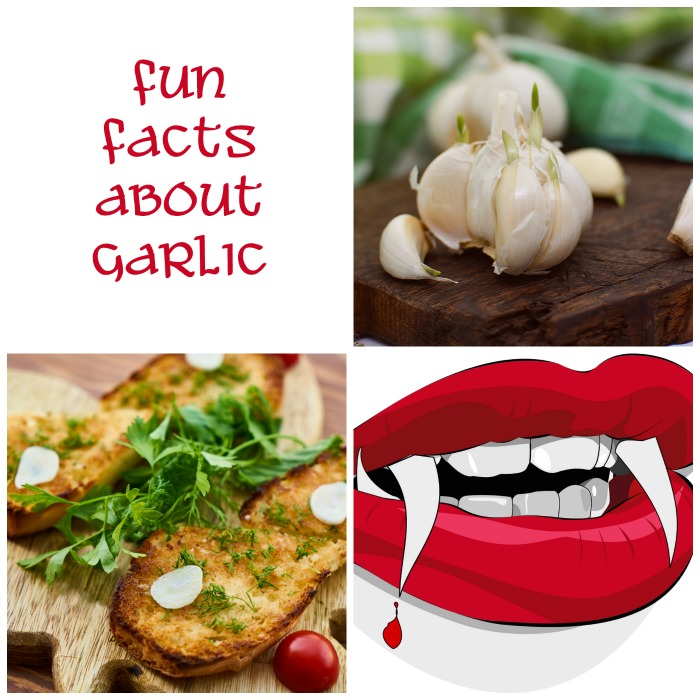 Set some interesting Garlic Fun Facts at Always The Holidays