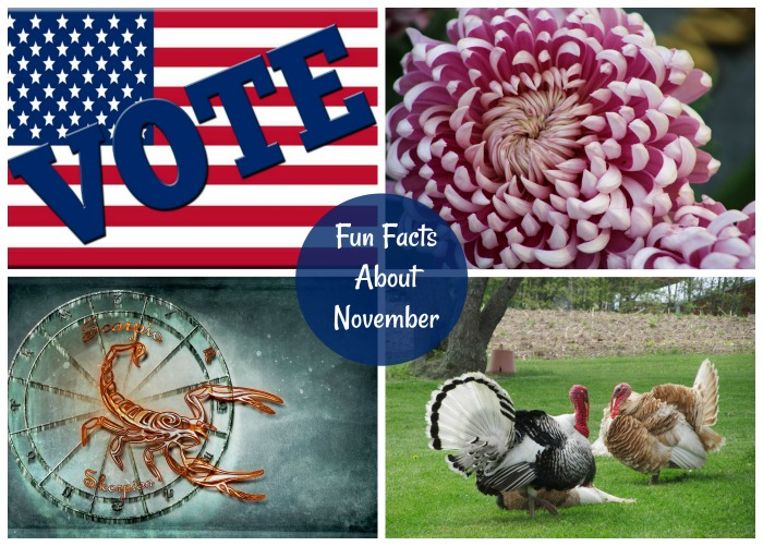Find out some fun facts about November as well as a list of National Days