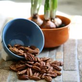 National pecan day recipes