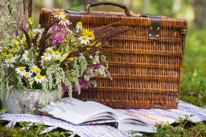 Fun facts about picnics