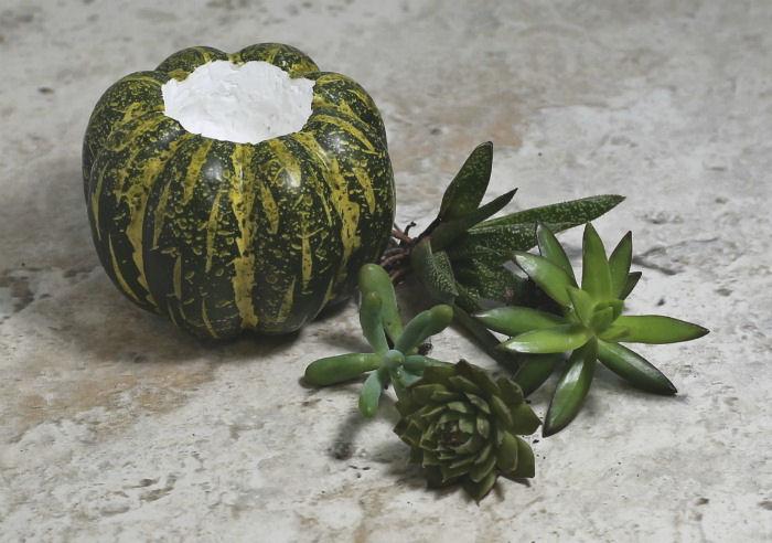 faux pumpkin and succulents