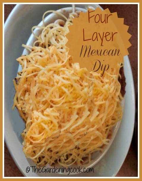 Mexican Chili Dip – A Crowd Pleaser