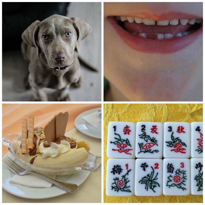 National Dog Day, Tooth Fairy Day, Banana Split Day and Mahjong Day