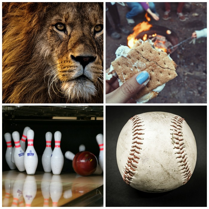 "World Lion Day, National s""mores Day, bowling day and baseball day"