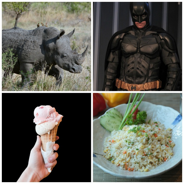 Rhinoceros, Batman, Ice cream cone, and fried rice