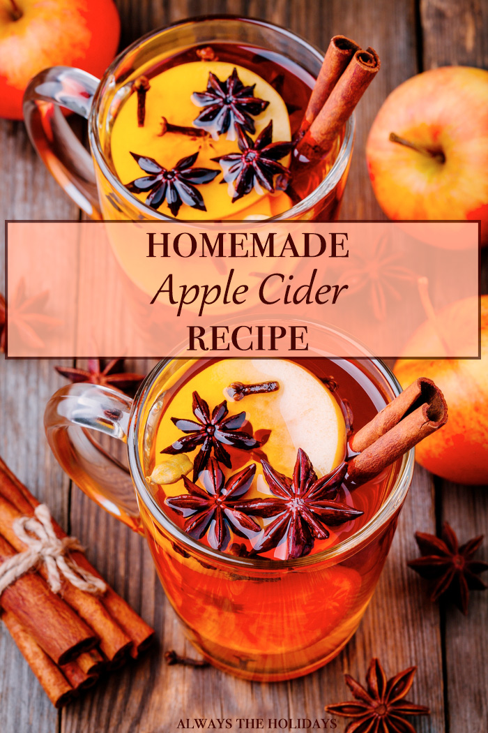 "Two glasses of hot spiced apple cider with a text overlay reading ""homemade apple cider recipe""."