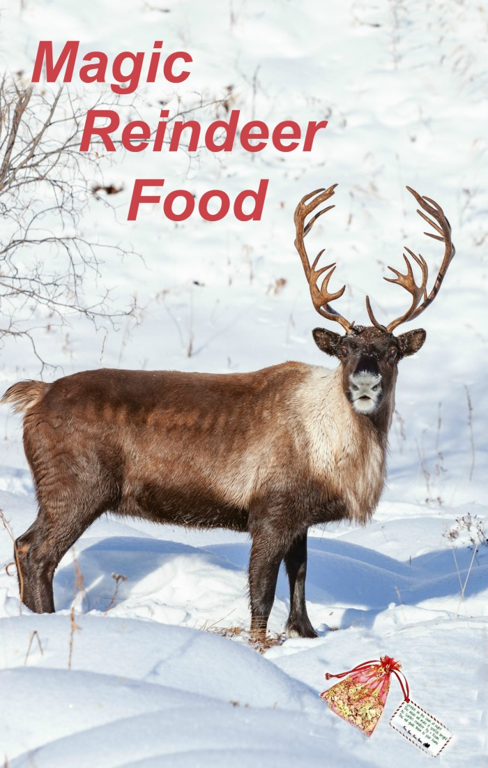 """Reindeer in the snow with reindeer food bag and label and words reading """"magic reindeer food."""""""