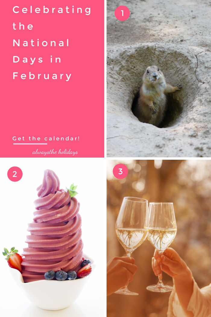 """Groundhog, frozen yogurt, and glasses of wine with text reading """"Celebrating the National Days in February - Get the Calendar."""""""