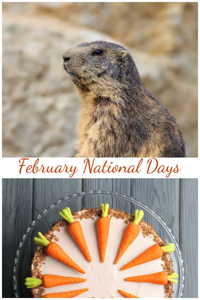 Groundhog and carrot cake with words reading February national days.
