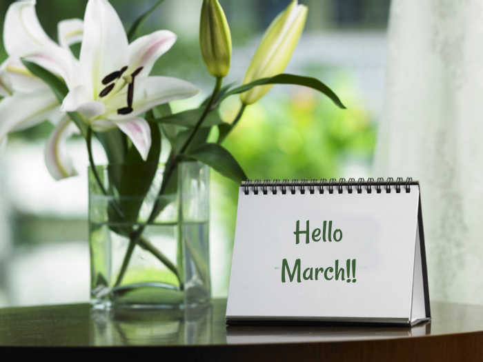 Lilies in a jar of water and words on a pad reading Hello March!!