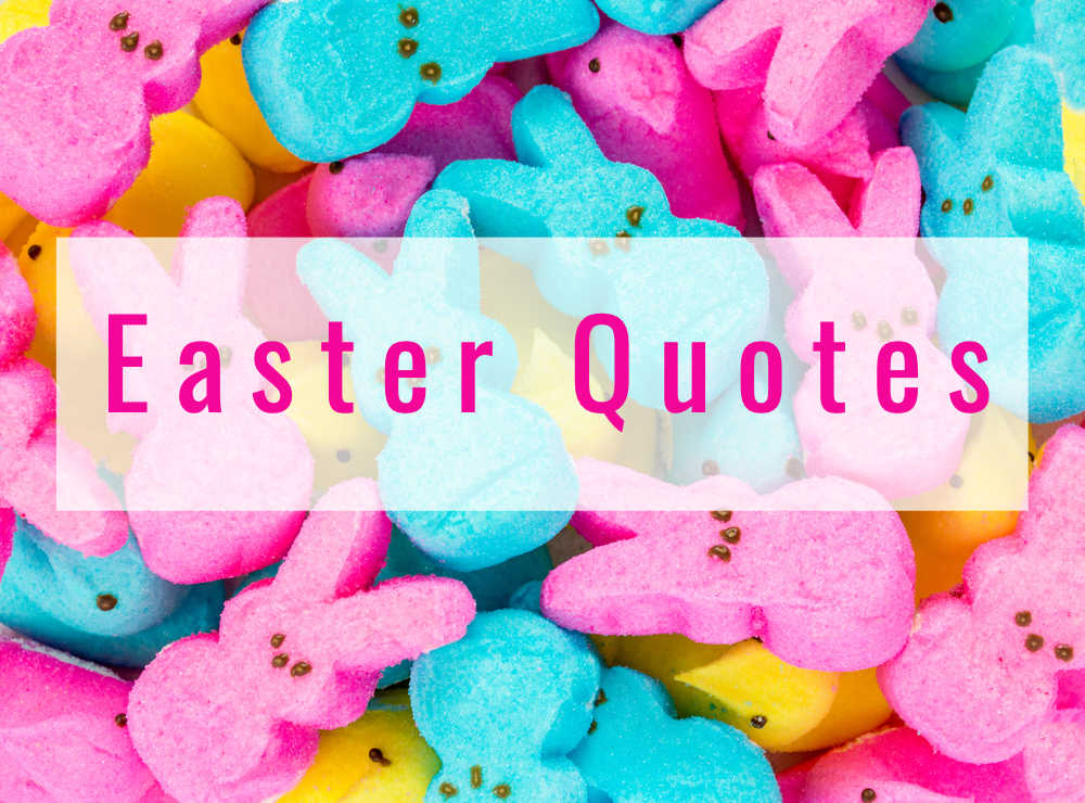 A text overlay reading Easter quotes over pink, yellow and blue peeps.