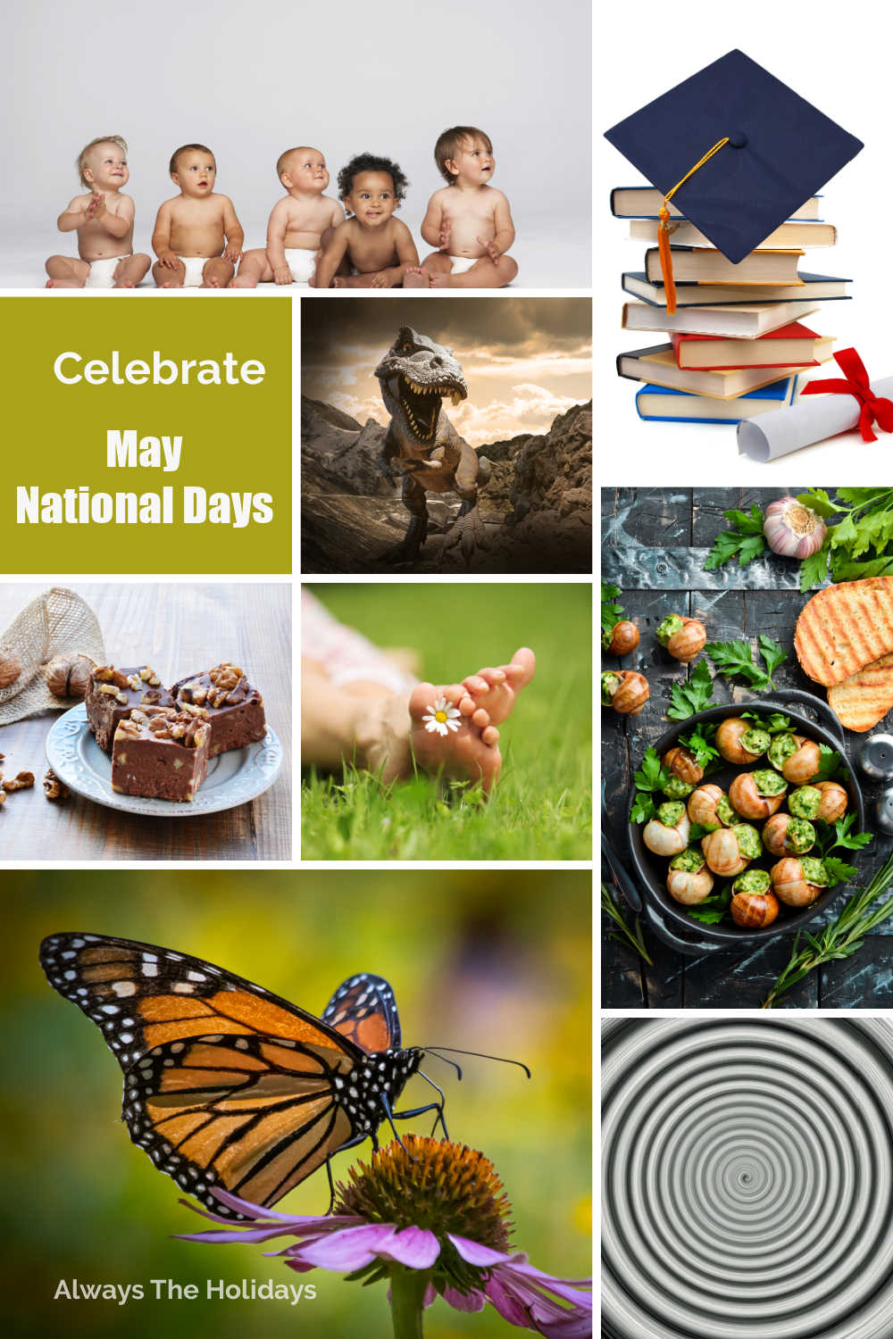 Collage, with books, food, butterfly, babies and other images and the words Celebrate May National Days.