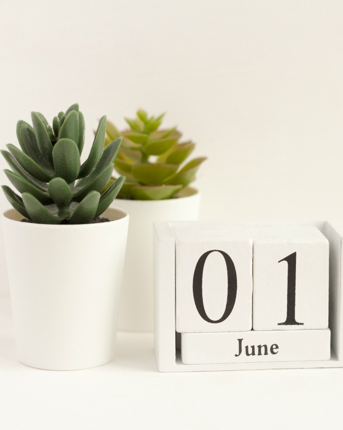 Block calendar for June 01 with succulents in pots.