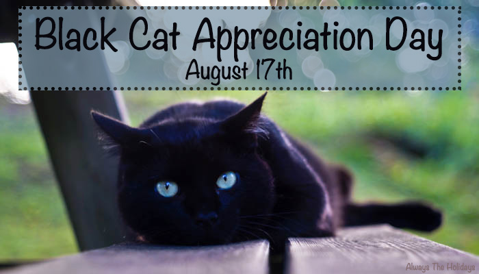 black cat appreciation day august 17