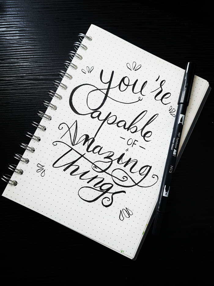 you're capable of amazing things quote
