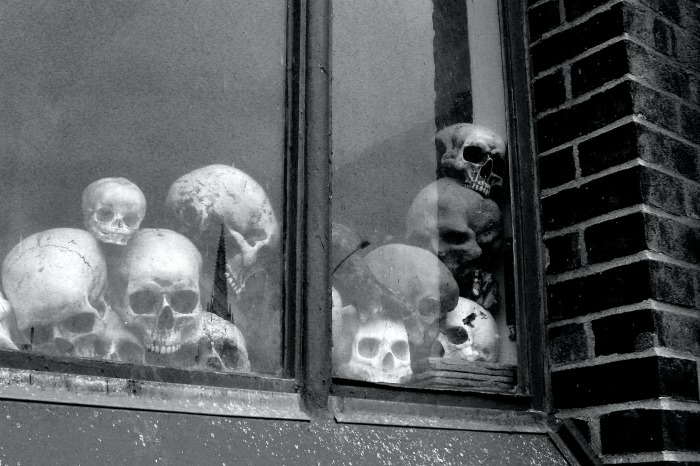 Skulls in a window