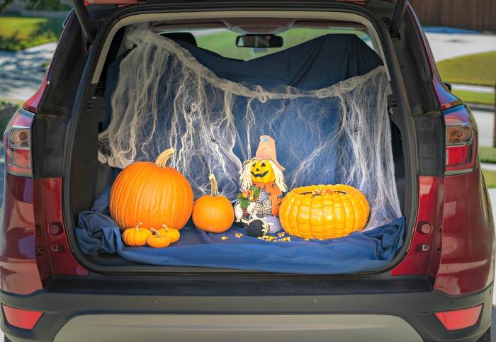 Pumpkins in a car trunk.
