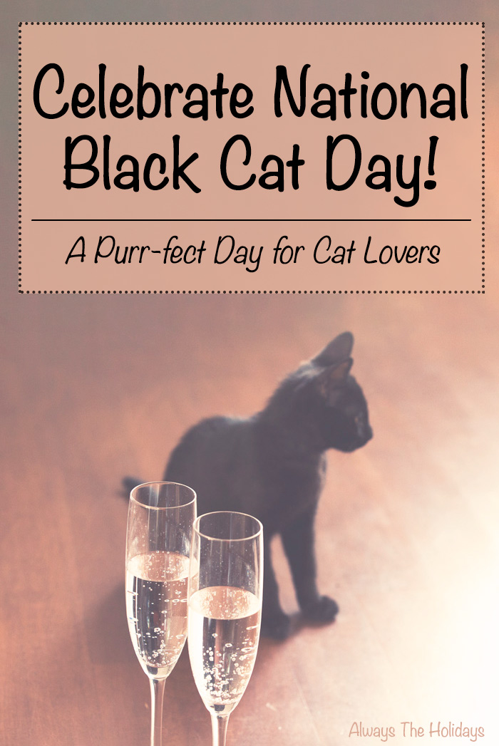 A black kitten on the floor behind champagne glasses with a text overlay to celebrate National Black Cat Day.