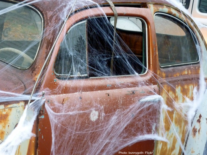 Spider webs on an old car.