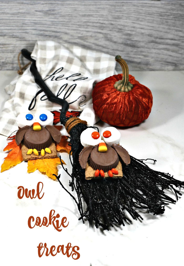 Two owl cookies with a broom and pumpkin with text reading Owl cookie treats.