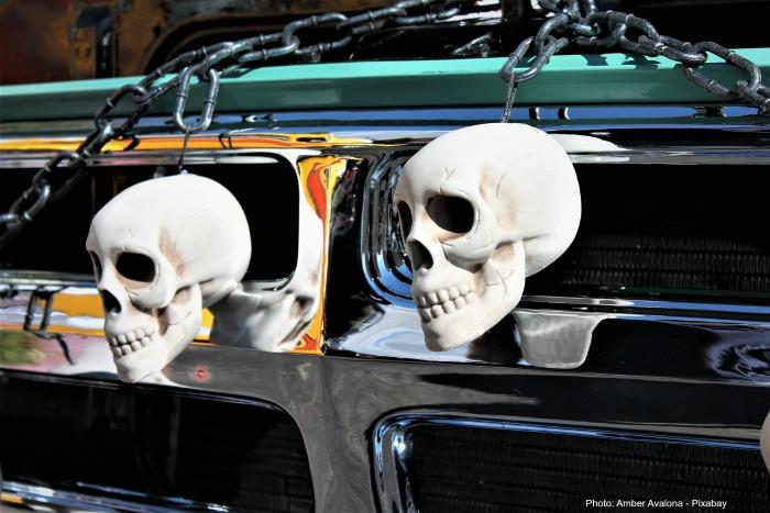 Skulls attached to a car bumper,