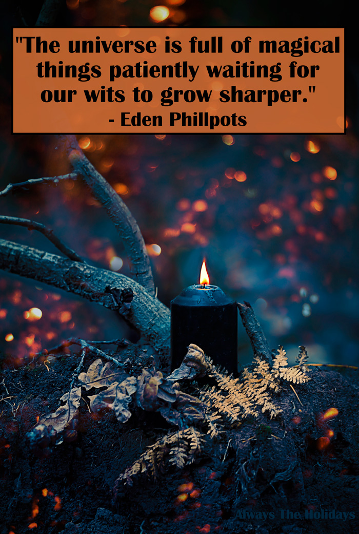 A black lit candle resting in the crook of a tree in a spooky forest with a quote about Halloween in a text overlay.