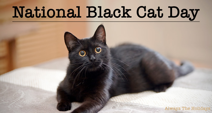 """A black cat sitting on a bed with a text overlay reading """"National Black Cat Day""""."""