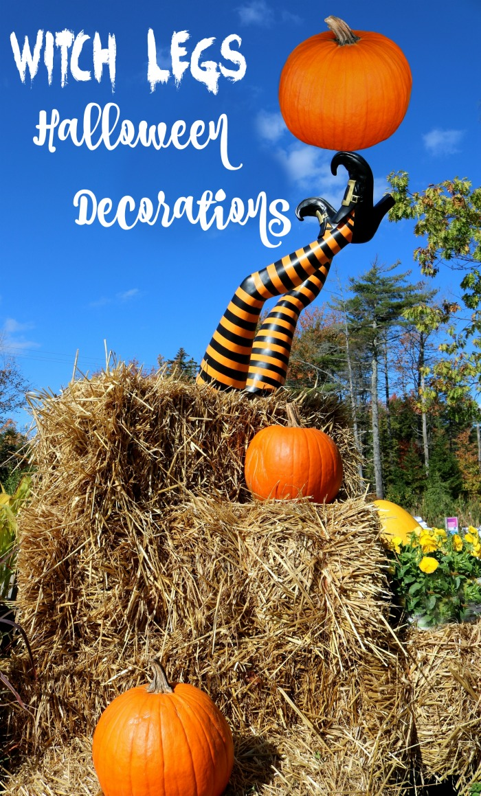 """Witch legs in a bale of hay with pumpkins and the words Witch legs Halloween Decorations."""""""
