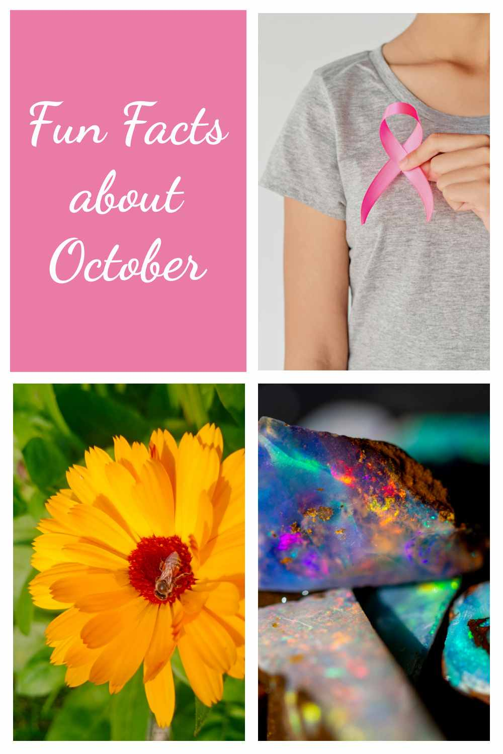 Breast cancer awareness ribbon, calendula, and opal in a collage with words Fun Facts about October.